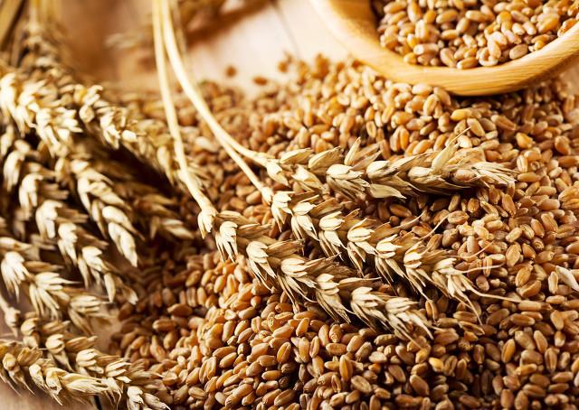 麦壳的功效与作用