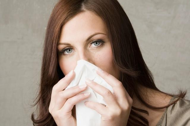 花粉过敏送什么花合适