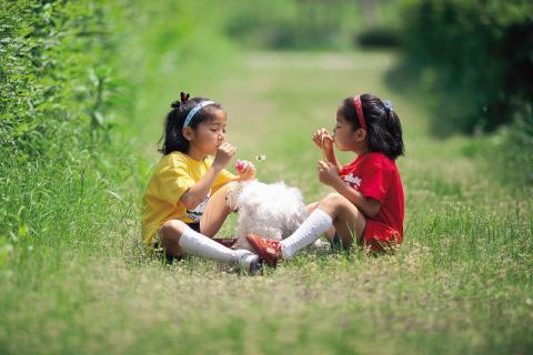 儿童脾胃虚寒如何调理,健康饮食是关键