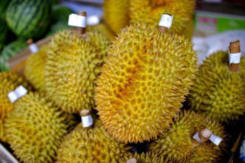 身为水果之王的榴莲,与什么不能一起吃吗?