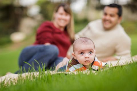 八个月宝宝花粉过敏怎么办?记住这三点!
