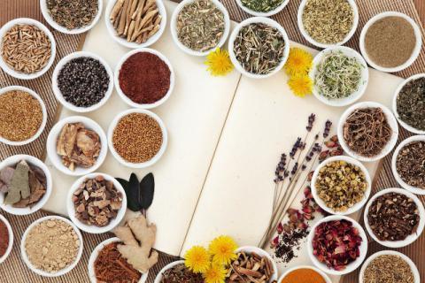 肾囊肿能吃菟丝子吗?怎么吃比较好