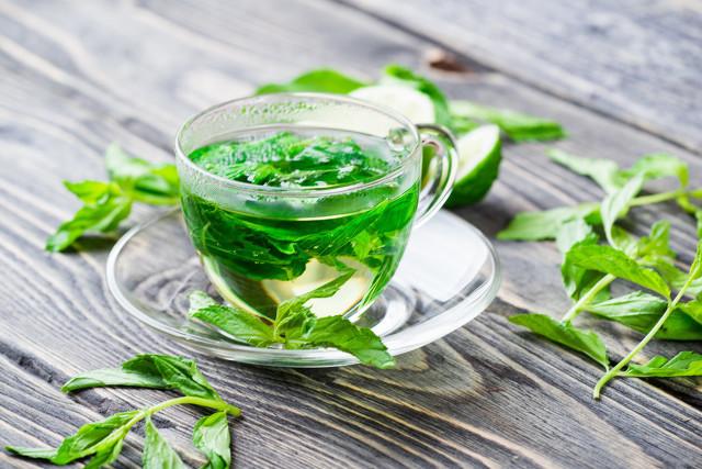 鲜薄荷叶怎么泡茶,薄荷叶泡茶有哪些功效和作用,预防风热感冒的良方