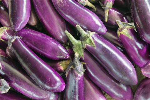 茄子的营养成分与功效都有哪些?营养美味的茄子,有这些注意事项