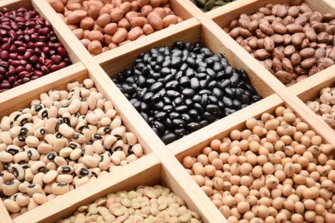 女人吃黑豆好还是黄豆好?黑豆和黄豆都有哪些好处?