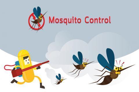 户外预防蚊虫叮咬的方法有哪些?蚊虫叮咬有危害,止痒消肿有妙招