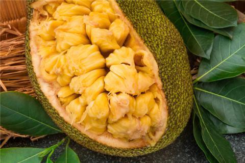 不宜吃菠萝蜜的人有哪些?菠萝蜜不能和什么一起吃?食用不当危害多