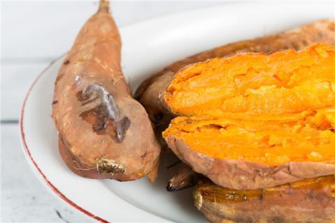 早上吃烤红薯会发胖吗?烤红薯很美味,红薯这些食用禁忌要了解