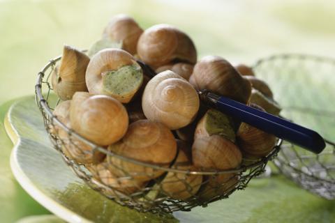 炒田螺需要什么佐料?炒田螺之前如何吐沙?这样烹饪更鲜美