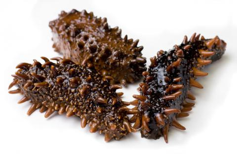 购买不同种类的海参时,如何避免高价低质量的海参?