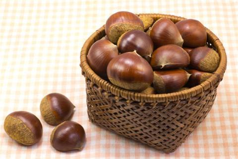 板栗有什么家常吃法?板栗的食疗作用