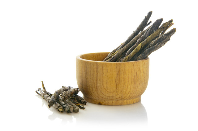 喝苦丁茶能减肥吗