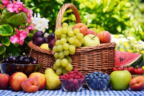 补气的水果有哪些?养生补气就吃它们