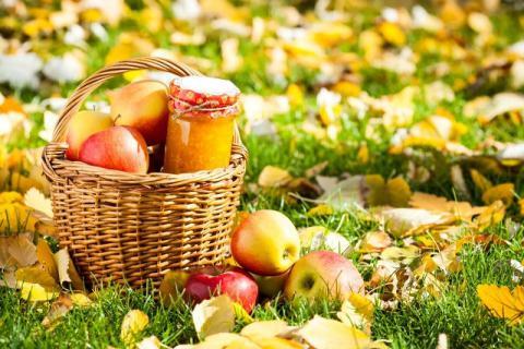 秋季时令水果蔬菜,秋天吃这些果蔬更养生