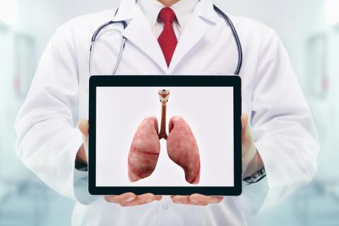 秋季�B肺食物有哪些?秋季�B肺的正�_方法