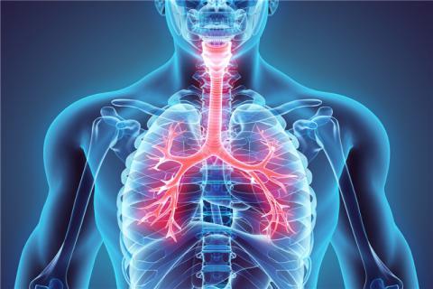 呼吸时机发生依附性吗?应用呼吸机前要做甚么准备?