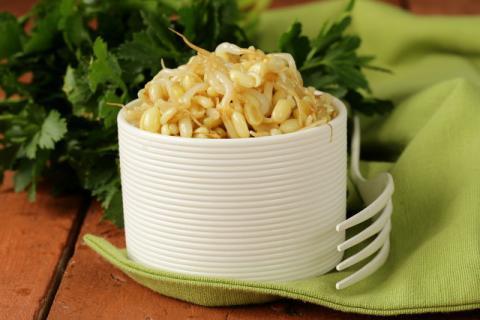 豆芽的功效与作用,黄豆芽和绿豆芽的区别