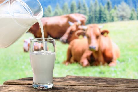 过期牛奶怎么处理