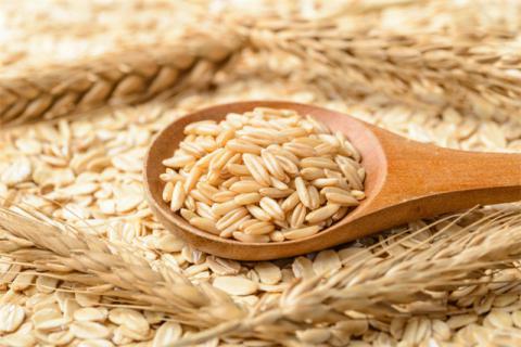 糙米发芽了还能吃吗?发芽糙米的营养功效