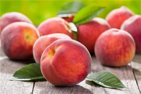 空腹吃桃子好不好?桃子不适合与什么一起吃?