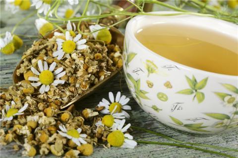 肥胖人群能喝菊花茶吗?菊花茶有减肥作用吗?