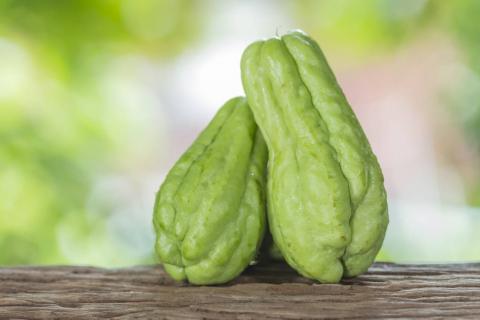 哪些人适合吃佛手瓜?孕妇能吃佛手瓜吗?