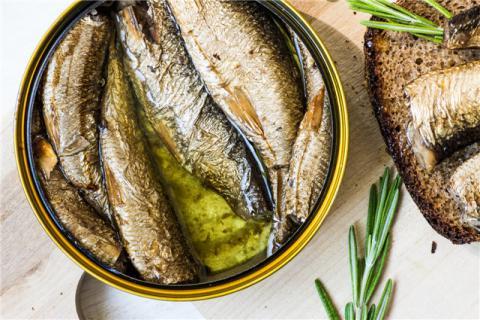 沙丁鱼有哪些营养价值?沙丁鱼有哪些用处?