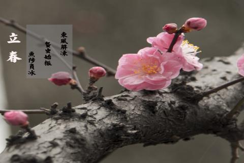 立春节气的风俗