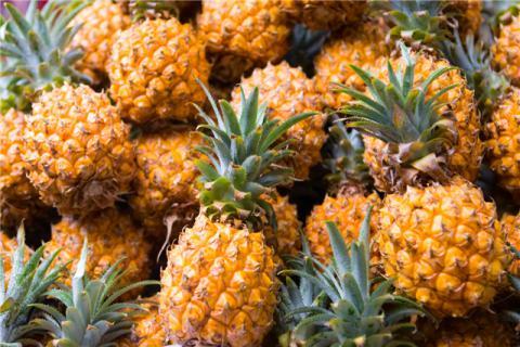 菠萝和龙虾能不能一起吃?菠萝都有哪些食用禁忌?