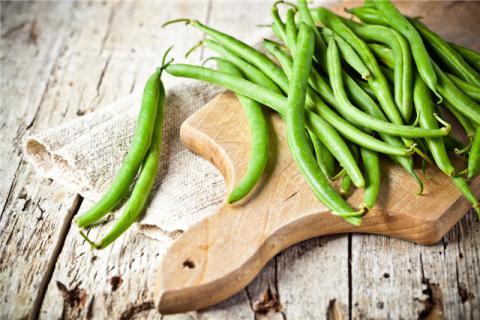 四季豆可以生吃吗
