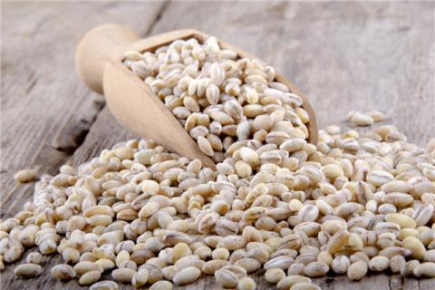 薏米能不能每天吃?食用薏米有哪些禁忌?