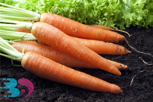 胡萝卜生吃的好处