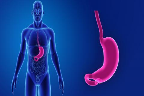 消化不良胃胀的小妙招,胃胀都有哪些症状?