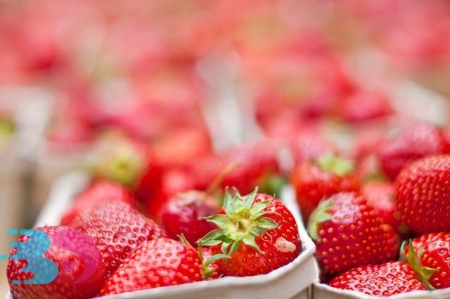5月份应季蔬菜水果