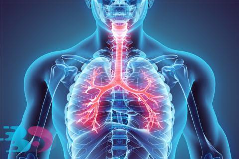 支气管发炎的症状有哪些