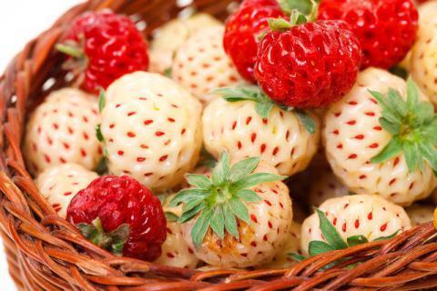 草莓怎么清洗才干净
