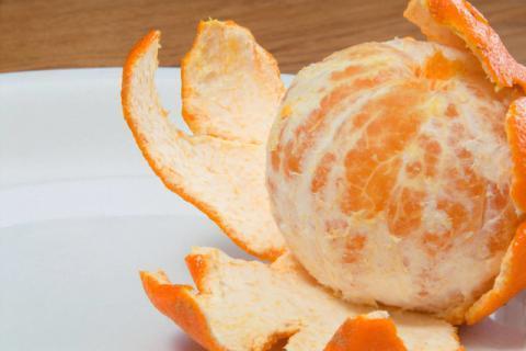 橘子是不是秋天的水果