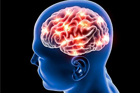 对大脑有益的几种食物