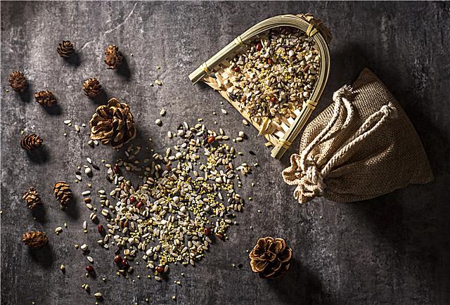 黑苦荞茶有什么保健功效