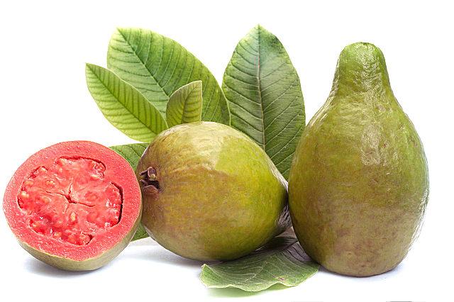 番石榴有什么营养功效?番石榴的营养吃法