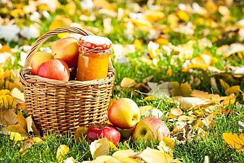 秋季养生短信送健康:秋渐凉,祝安康