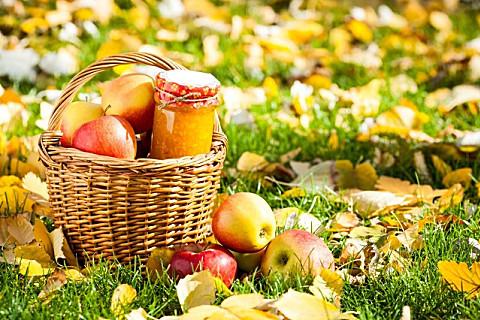 秋季养生祝福语