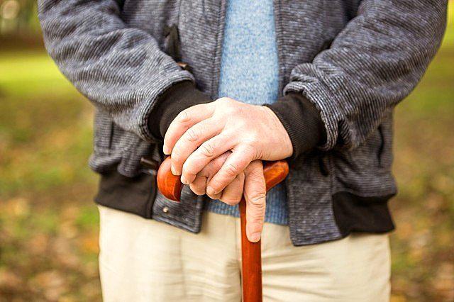 秋季老年人的养生食谱