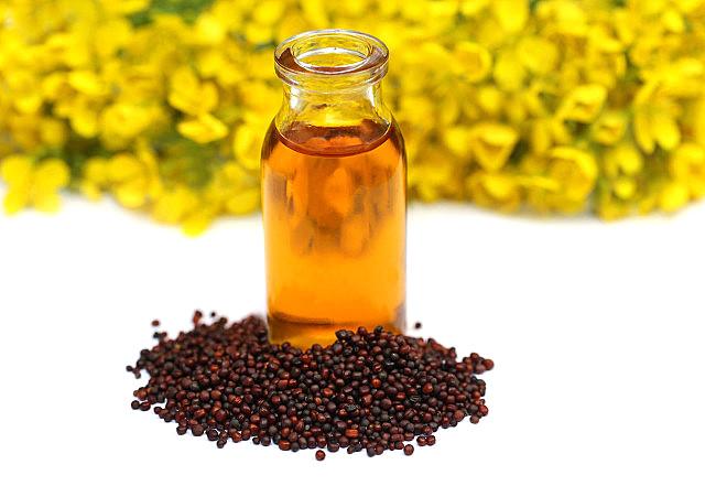 山茶油能不能涂脸?山茶油怎么美容?
