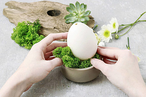 吃鹅蛋有哪些好处 鹅蛋怎么挑选