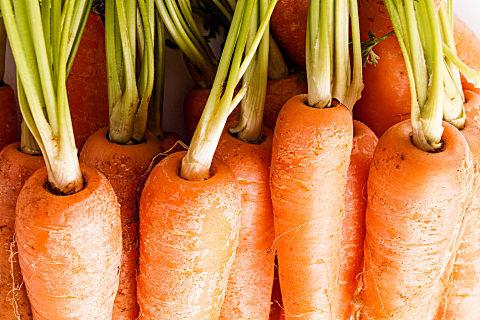 胡萝卜吃多了皮肤会变黄吗