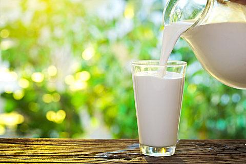 为什么水牛奶是甜的?喝水牛奶有什么好处?