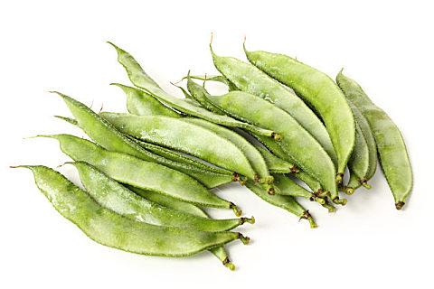 生的四季豆能不能吃