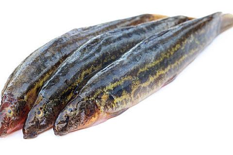 鱼皮有什么营养美味的吃法