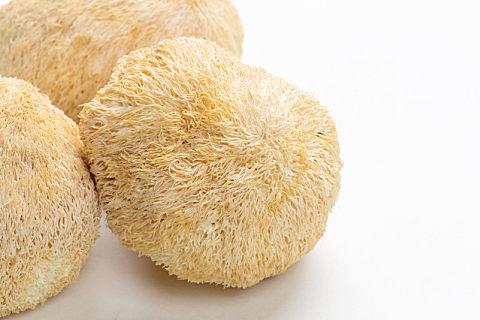 猴头菇怎么选品质?这几个方法告诉你如何分辨!
